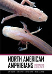 North American Amphibians: Distribution and Diversity